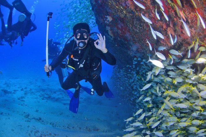 Les plongées en Corse pour vos vacances